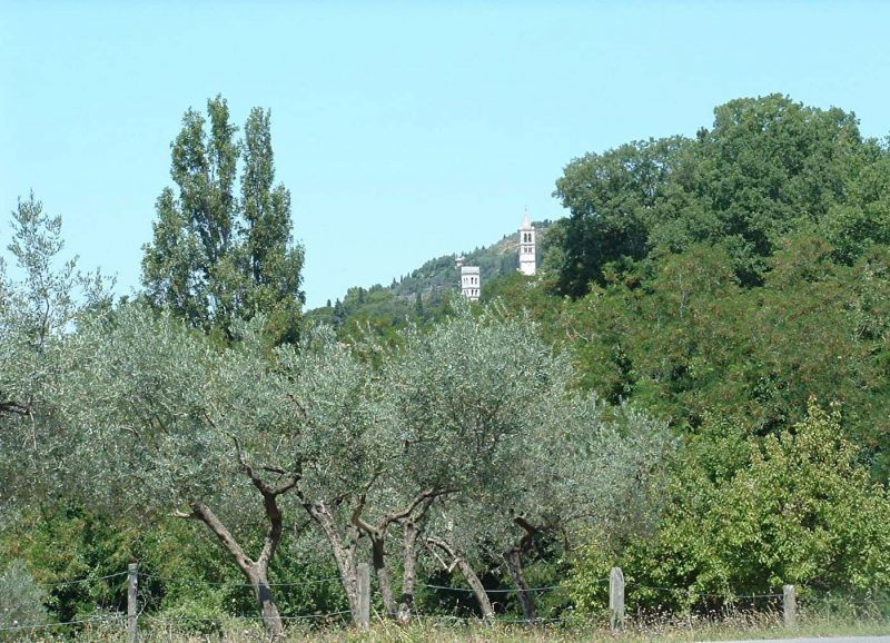 Towers of Assisi
