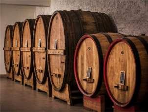 Wine cellar Umbria