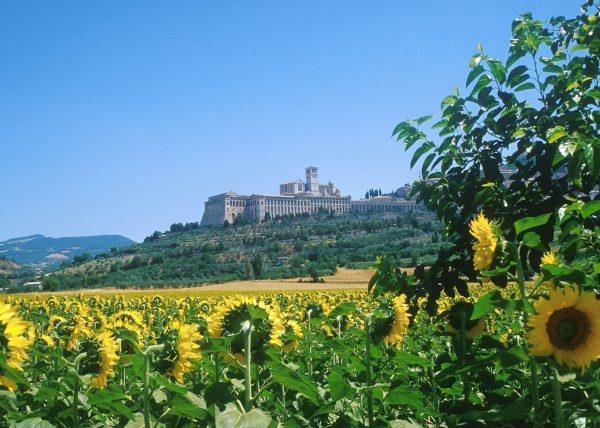 Convento di San Francesco Assisi