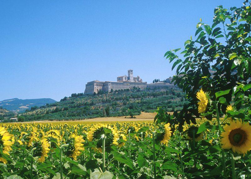 De Franciscusbasiliek in Assisi