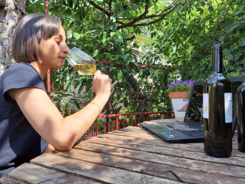 wine tasting online