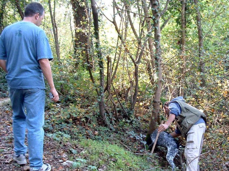 truffel zoeken in Umbrie
