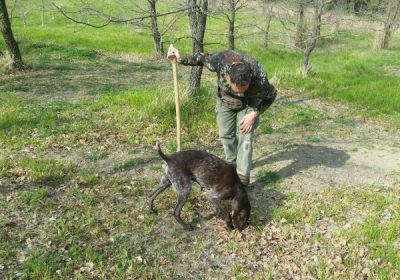 truffle hunter and dog in Umbria
