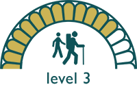 walking level 3