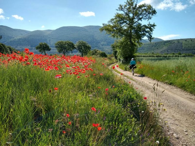 walking umbrian landscape