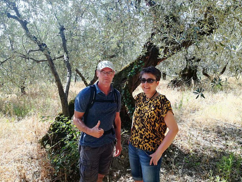 camminatori tra olive